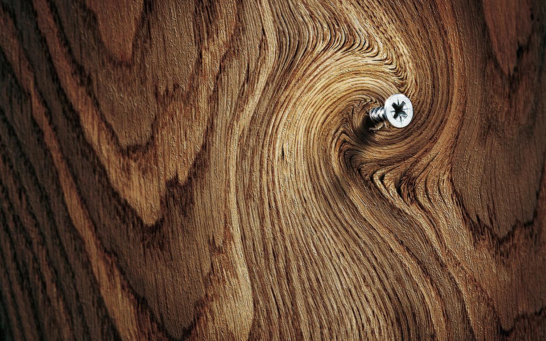 Твердость древесины по Бринеллю